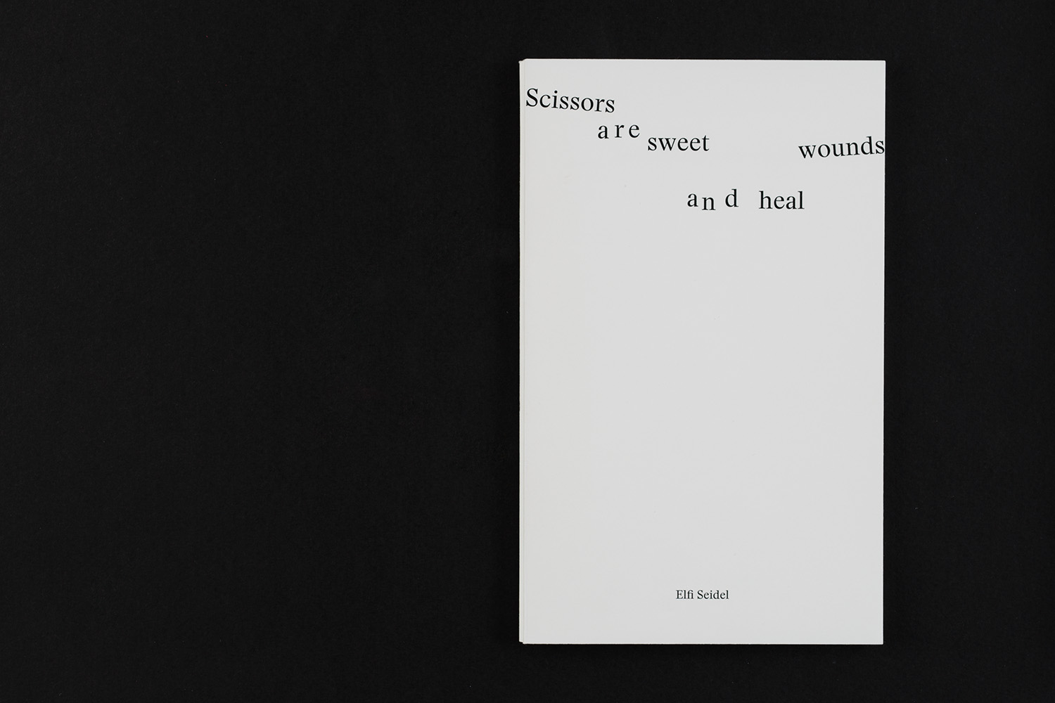 Elfi Seidel, Scissors are sweet and heal wounds, 2017
